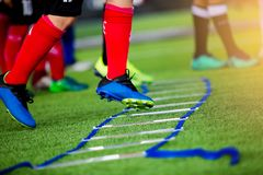 Adder drills for football training. Ladder drills exercises for. Young boy soccer players Jogging and jump between ladder drills for football training. Ladder stock photography