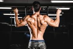 Addestramento atletico di dieta dell'uomo di potere bello che pompa su muscolo dorsale fotografia stock libera da diritti