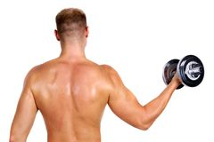 Addestramento del Bodybuilder Fotografie Stock Libere da Diritti