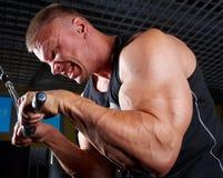 Addestramento del Bodybuilder in ginnastica Immagini Stock