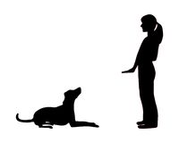 Addestramento del cane (obbedienza) illustrazione vettoriale