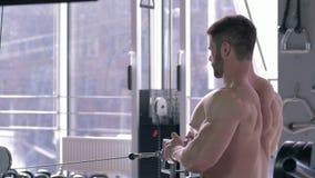 Addestramento del culturista, forte sportivo che fa allenamento della costruzione del muscolo sul simulatore della trazione mentr archivi video