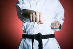 Addestramento del punzone di karatè Fotografia Stock Libera da Diritti