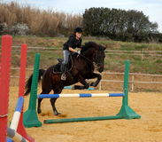 Addestramento del salto Fotografie Stock