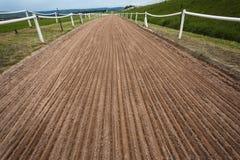 Addestramento della pista della sabbia del cavallo   Fotografie Stock