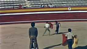 Addestramento della tauromachia di Ibiza stock footage