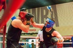 Addestramento di allenamento di pugilato Immagini Stock Libere da Diritti