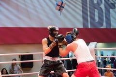 Addestramento di allenamento di pugilato Fotografie Stock Libere da Diritti