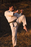 Addestramento di arti marziali Fotografia Stock