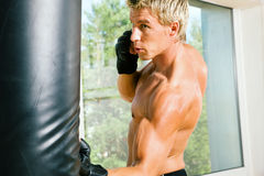 Addestramento di arti marziali Immagine Stock
