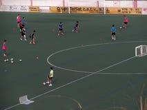 Addestramento di calcio (I) Fotografia Stock Libera da Diritti