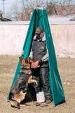 Addestramento di cani del pastore tedesco Cane mordace Fotografia Stock Libera da Diritti
