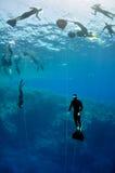 Addestramento di Freediving Immagini Stock