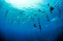 Addestramento di Freediving nella profondità del foro blu Fotografia Stock