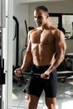 Addestramento di ginnastica Fotografie Stock