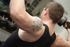 Addestramento di ginnastica di allenamento di Bodybuilding Immagini Stock