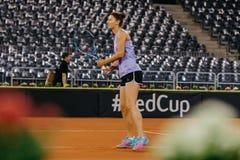 Addestramento di Irina Begu a Fed Cup Romania 2018 Immagine Stock Libera da Diritti