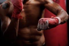 Addestramento di lotta Immagine Stock