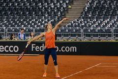 Addestramento di Viktorija Golubic a Fed Cup 2018 Fotografia Stock