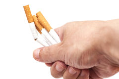 Addiction. Closeup of the broken cigarettes on man hand. Quit sm Stock Photo