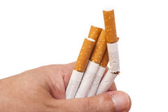 Addiction. Closeup of the broken cigarettes on man hand Stock Photos