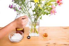 Addieren Sie Apfelweinessig und -zucker, um Blumen frischer zu halten Lizenzfreies Stockfoto