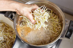 Adding bean sprout to the soup Stock Photos