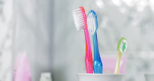Adding Child Toothbrush into the Holder. Child Birth Concept stock video