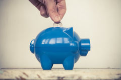 Adding coins to the piggy bank Stock Photography