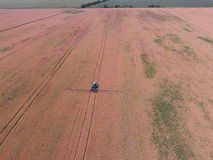 Adding herbicide tractor on the field of ripe wheat. View from above. Royalty Free Stock Photo