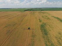 Adding herbicide tractor on the field of ripe wheat. View from above. Stock Photos