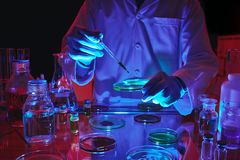 Adding reagent. CLose-up image of laboratory worker adding reagent in petri dish Royalty Free Stock Photography