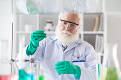 Adding reagent. Mature bearded scientist adding reagent into test-tube Royalty Free Stock Photography