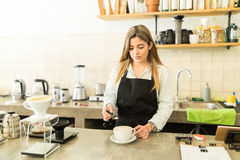 Adding some spices to a cup of cappuccino. Good looking young female barista adding the finishing touches to a cup of cappuccino in a coffee shop Royalty Free Stock Photography