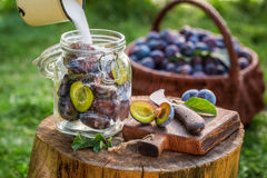 Free Adding Sugar Into Jar With Plums For Compote Royalty Free Stock Photos - 70633758