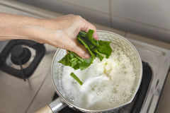 Adding vegetable. To the boiled soup Royalty Free Stock Photography