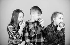 Adding vitamins in kids menu. Small children enjoy eating apples full of vitamins. Little children biting red vitamin. Apples. Vitamins are important for stock images