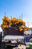 Addis Mercato w Addis Abeba, Etiopia w Afryka zdjęcia royalty free