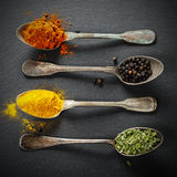 additives aromatycznych kuchni elementów karmowe ziele składników naturalnej selekci pikantność fotografia royalty free