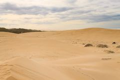 Addo Elephant National Park-Meeresgebietlandschaft, Südafrika Lizenzfreie Stockbilder