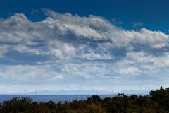 Addo Landscape Stockfotografie