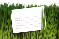 Address Book and green grass Royalty Free Stock Image
