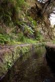Adduzione di acqua storica, conosciuta come Levada in foresta tropicale, isola del Madera, Immagine Stock
