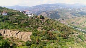 Adega da vista aérea na inclinação do vale de Douro video estoque