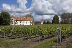 Adega de Allaman do castelo - Switzerland fotos de stock royalty free