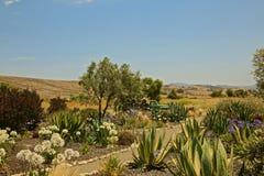 Adega de Dierberg da paisagem de Lompoc Califórnia foto de stock