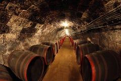 Adega de vinho Fotografia de Stock