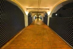 Adega de vinho Imagens de Stock