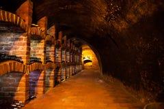 Adega de vinho com muitos tipos das garrafas Fotos de Stock Royalty Free