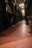 Adega de vinho de Argentina fotografia de stock